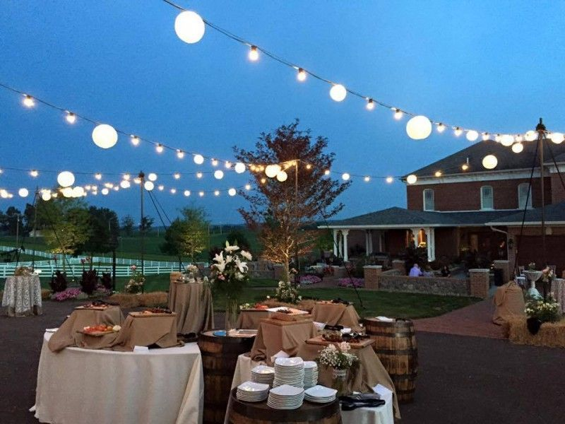 Bistro/Cafe/Edison Lighting - Cleveland wedding lighting