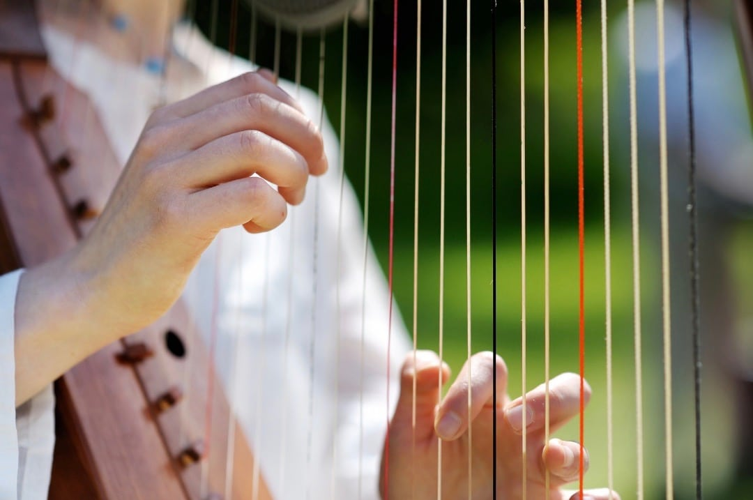 Up-close picture of harpist strumming live wedding music