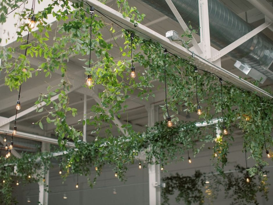 Bistro lighting hanging with green vines from beams at The Madison in Cleveland.