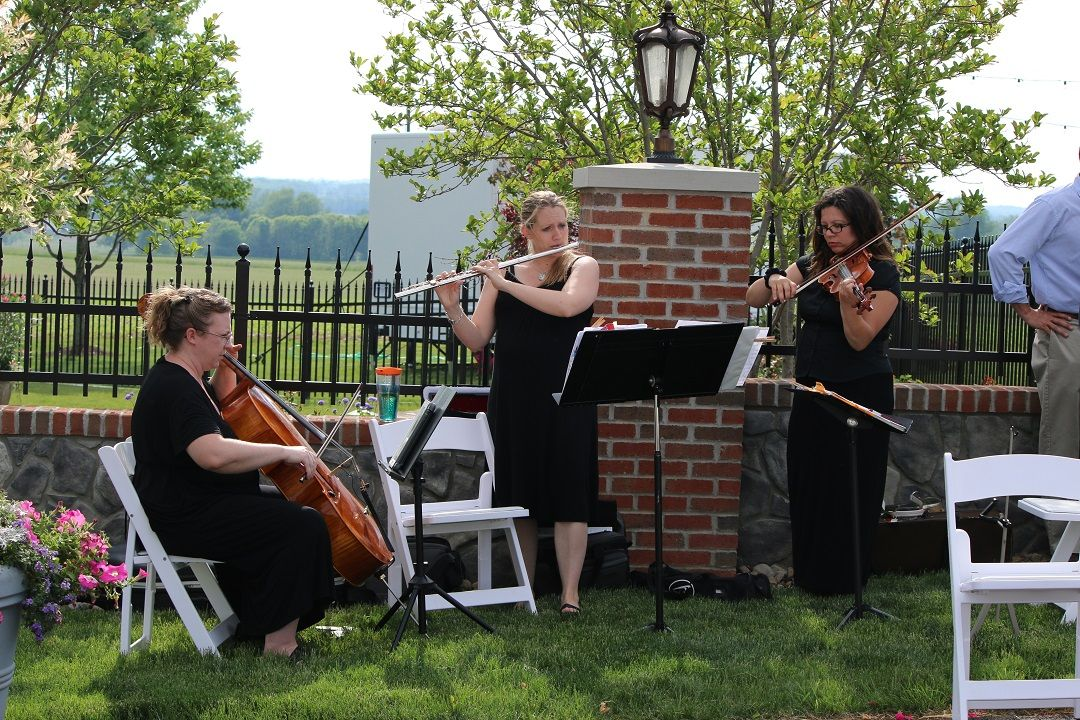 Live Wedding Ceremony Music By Selective Sound Entertainment