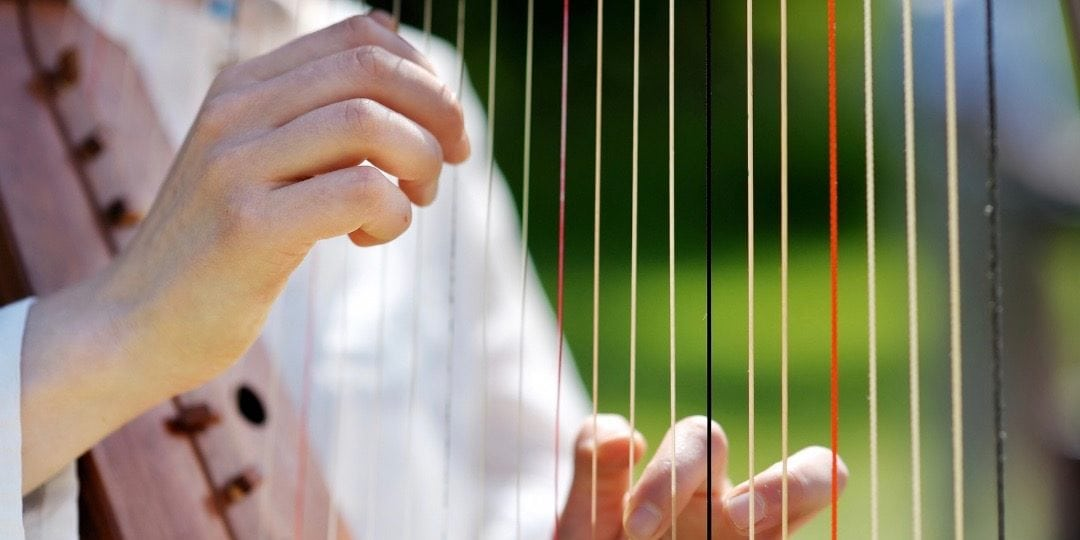 Up-close picture of harpist strumming harp